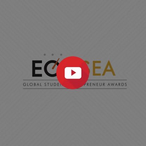 EO GSEA Infographics