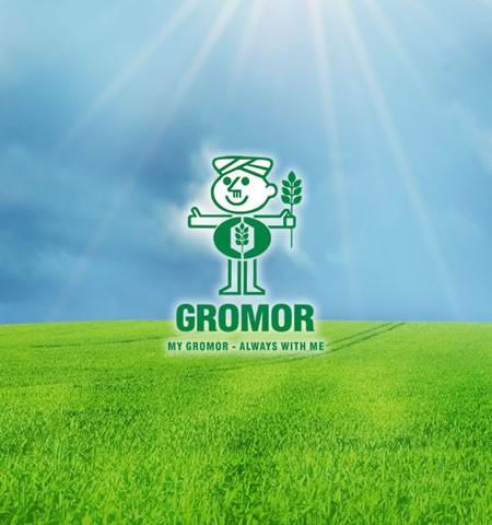 Gromor1
